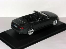 Прикрепленное изображение: Ford & Audi 014.JPG