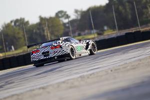 Прикрепленное изображение: 2014-chevrolet-corvette-c7-r-sebring-test-06.jpg