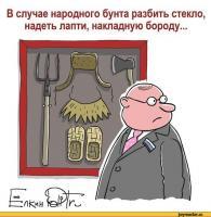 Прикрепленное изображение: елкин-карикатуры-бунт-инструкция-782750.jpeg