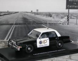 Прикрепленное изображение: Dodge Diplomat CHP 1 P1010155.JPG