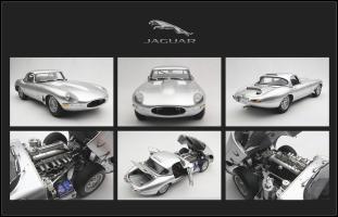 Прикрепленное изображение: Jaguar.jpg