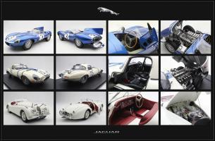 Прикрепленное изображение: Jaguar (2).jpg