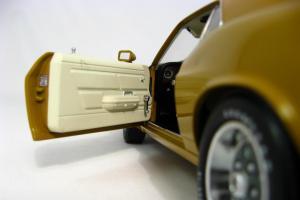 Прикрепленное изображение: 1970 Mustang SCJ428 R-code (13).JPG