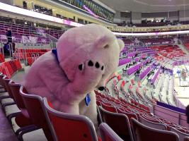 Прикрепленное изображение: Sochi2014 Bear is inconsolable after Russia\'s loss to Finland in the IceHockey.jpg