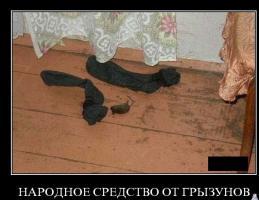 Прикрепленное изображение: post-1846-1254215943.jpg