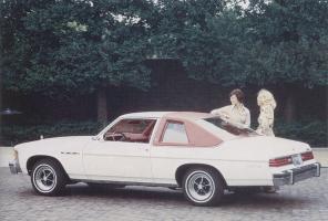 Прикрепленное изображение: `75 Buick Skylark.jpg