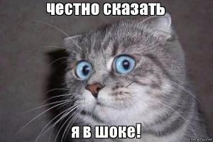 Прикрепленное изображение: k64dv6.jpg