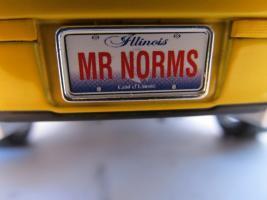 Прикрепленное изображение: mr.Norms.jpg