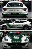 Прикрепленное изображение: Dubai-Police-Ferrari-FF-2.jpg