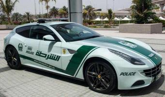 Прикрепленное изображение: Ferrari-FF-Dubai-Police-2.jpg