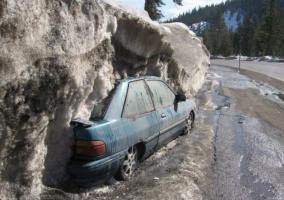 Прикрепленное изображение: снег растаял.jpg