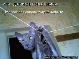 Прикрепленное изображение: view.jpg