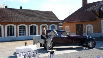 Прикрепленное изображение: Packard body.jpg