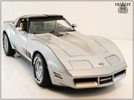 Прикрепленное изображение: CHEVROLET Corvette Collector Edition 1982 009.jpg