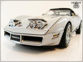 Прикрепленное изображение: CHEVROLET Corvette Collector Edition 1982 012.jpg