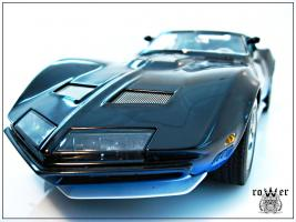 Прикрепленное изображение: CHEVROLET Manta Ray 1968 052.jpg