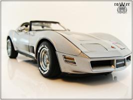 Прикрепленное изображение: CHEVROLET Corvette Collector Edition 1982 021.jpg