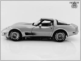 Прикрепленное изображение: CHEVROLET Corvette Collector Edition 1982 003.jpg