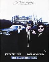 Прикрепленное изображение: the_blues_brothers_3_1024_wallpapersuggest_com-1024x768.jpg