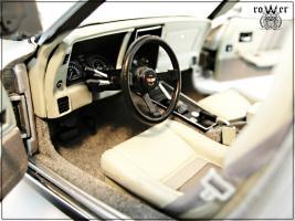 Прикрепленное изображение: CHEVROLET Corvette Collector Edition 1982 016.jpg
