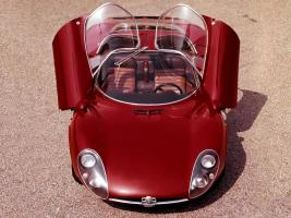Прикрепленное изображение: Alfa Romeo Tipo 33 6.jpg