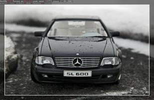 Прикрепленное изображение: IMG_5208.JPG