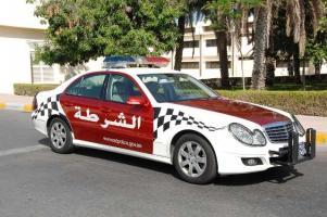 Прикрепленное изображение: policecars.jpg