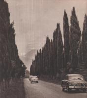 Прикрепленное изображение: Дорога на Пицунду.jpg