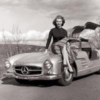 Прикрепленное изображение: Sophia Loren.jpg