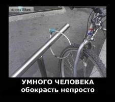 Прикрепленное изображение: vEpOnlWy590.jpg