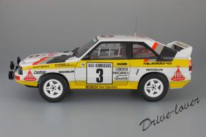 Прикрепленное изображение: Audi Sport Quattro Rally Monte Carlo 1985 Autoart for Audi 5031000105_04.JPG