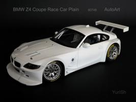 Прикрепленное изображение: BMW Z4 Race.jpg
