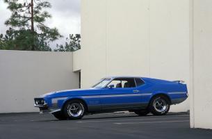Прикрепленное изображение: 1971_Ford_MustangBOSS3512.jpg