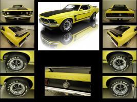 Прикрепленное изображение: 1969_Ford_Mustang_BOSS_302_Sportroof_005.jpg