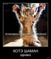 Прикрепленное изображение: 480818-2010_12_08-02_28_45-bomz_org-demotivator_kjtye_shaman_odnako.jpg