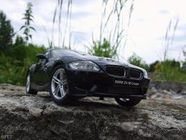 Прикрепленное изображение: BMW Z4M Coupe  (E86) (22).jpg