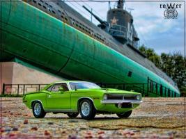 Прикрепленное изображение: barracuda.jpg