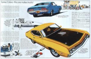 Прикрепленное изображение: Torino Cobra.jpg