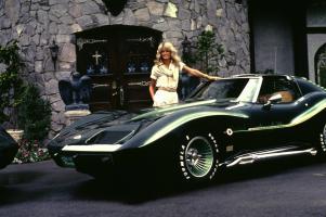 Прикрепленное изображение: farrah-fawcett-at-home-with-her-corvette-c-1976--1978-gunther.jpg