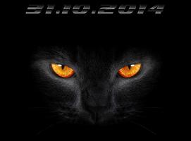 Прикрепленное изображение: ZZ.png