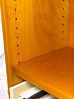 Прикрепленное изображение: Shop-Made-Shelf-Pins.jpg