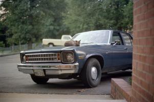 Прикрепленное изображение: 1979 Charlottesville Virginia.jpg