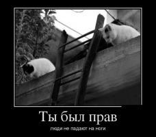 Прикрепленное изображение: dem-0001.jpg