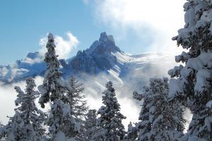 Прикрепленное изображение: Dolomiti Superski 1.jpeg