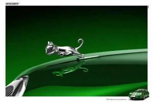 Прикрепленное изображение: baby-logo-leaping-kitten-jaguar1.jpg