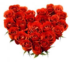 Прикрепленное изображение: цветы.png