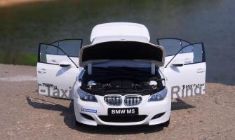 Прикрепленное изображение: BMW M5 E60 (10).JPG