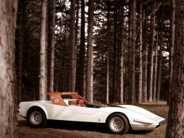 Прикрепленное изображение: P33_Roadster_18.jpg