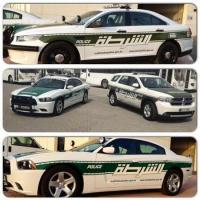Прикрепленное изображение: dubai-police-cars-2012.jpg