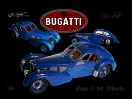 Прикрепленное изображение: Bug 57.jpg